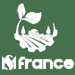 MS-FRANCE-logo-docshipper-partner
